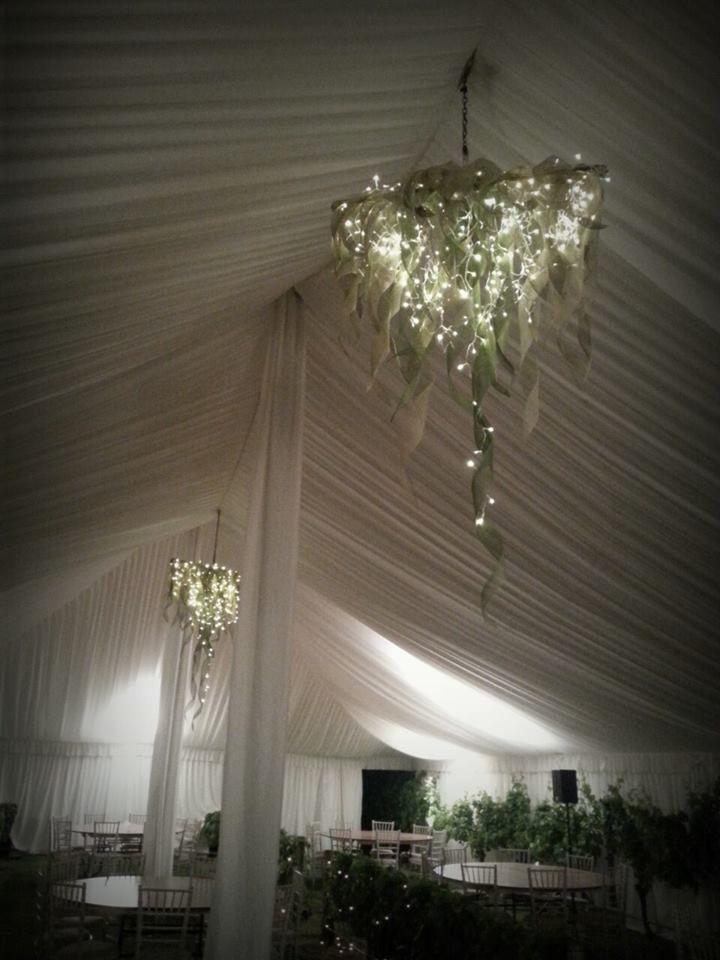 Large Hapene flax chandliers with fairy lights