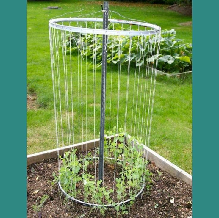 wow >>> Recycled Bike Wheel Garden Trellis�I like this idea!!