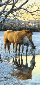 Reflections – 1000pc Jigsaw Puzzle by SunsOut (discon-20694) – Carolbe