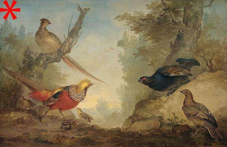 Fazanten, Aert Schouman, 1730 - 1760