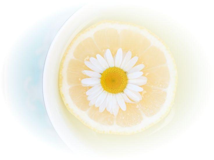 Цитата: Учение Абрахама - Эстер и Джерри Хикс Медитация третья - Физическое благополучие  🌀 3   Сосредотачиваясь на позитивных мыслях, вы позволяете клеткам своего физического тела вернуться к естественному равновесию. Самое важное – глубокое дыхание. Спокойно воспринимайте наши слова, позволяя мягко настроиться на Энергию вашего Источника…  Положительные эмоции – явный признак того, что вы относитесь к тому, о чем или о ком вы думаете, таким же образом, что и Источник, находящийся внутри…