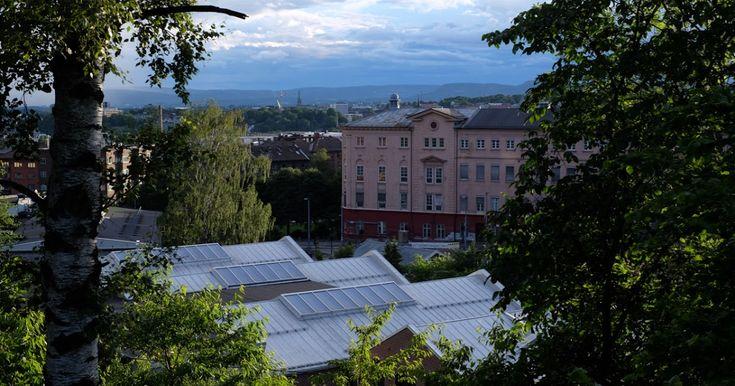 I Hekkveien ved Carl Berners plass i Oslo ligger en liten park med det underlige navnet «Dette er et fint sted». Det er en av hovedstadens m...