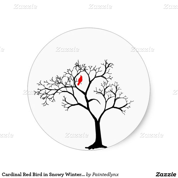 Cardinal Red Bird in Snowy Winter Tree Classic Round Sticker