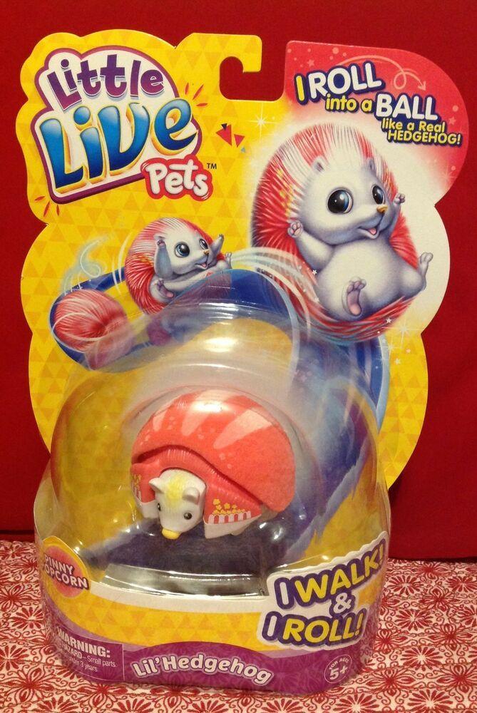Little Live Pets Lil Hedgehog Pinny Popcorn Moc Littlelivepets Little Live Pets Pets Hedgehog