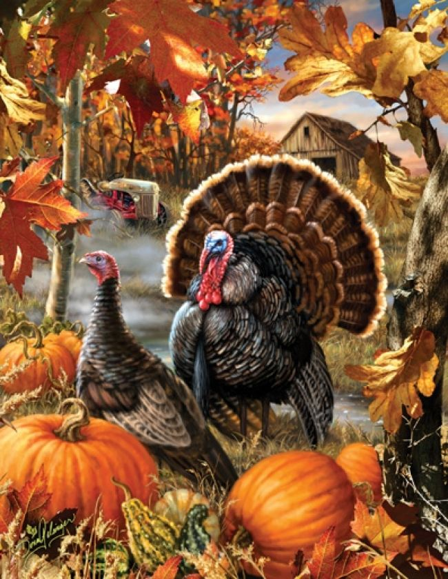"Gobbler Farms"""" is a 1000 piece puzzle that depicts a gobbler strutting by a hen in a field of pumpkins. It would make a fun housewarming gift for the hunter in your life or a great winter project for"