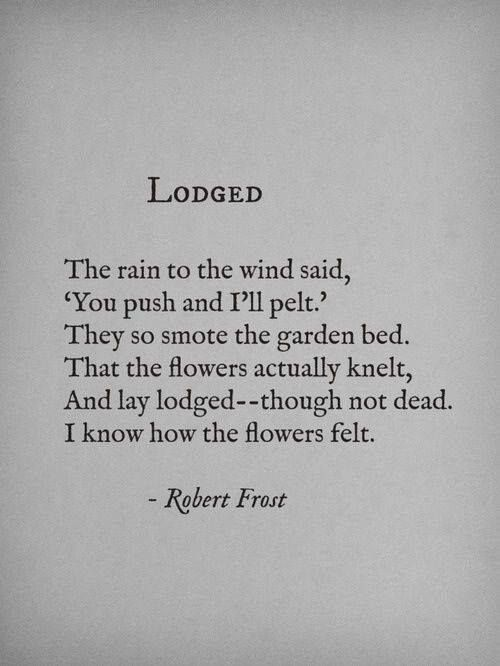 """Lodged"" by Robert Frost http://www.poemhunter.com/robert-frost/"