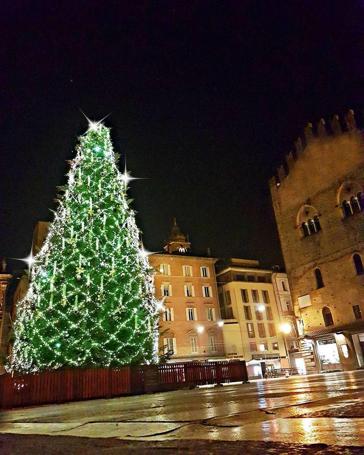 Болонья (Bologna) 🤗🌲🌲🌲  #italia #italy #amo_litalia #Bologna2016
