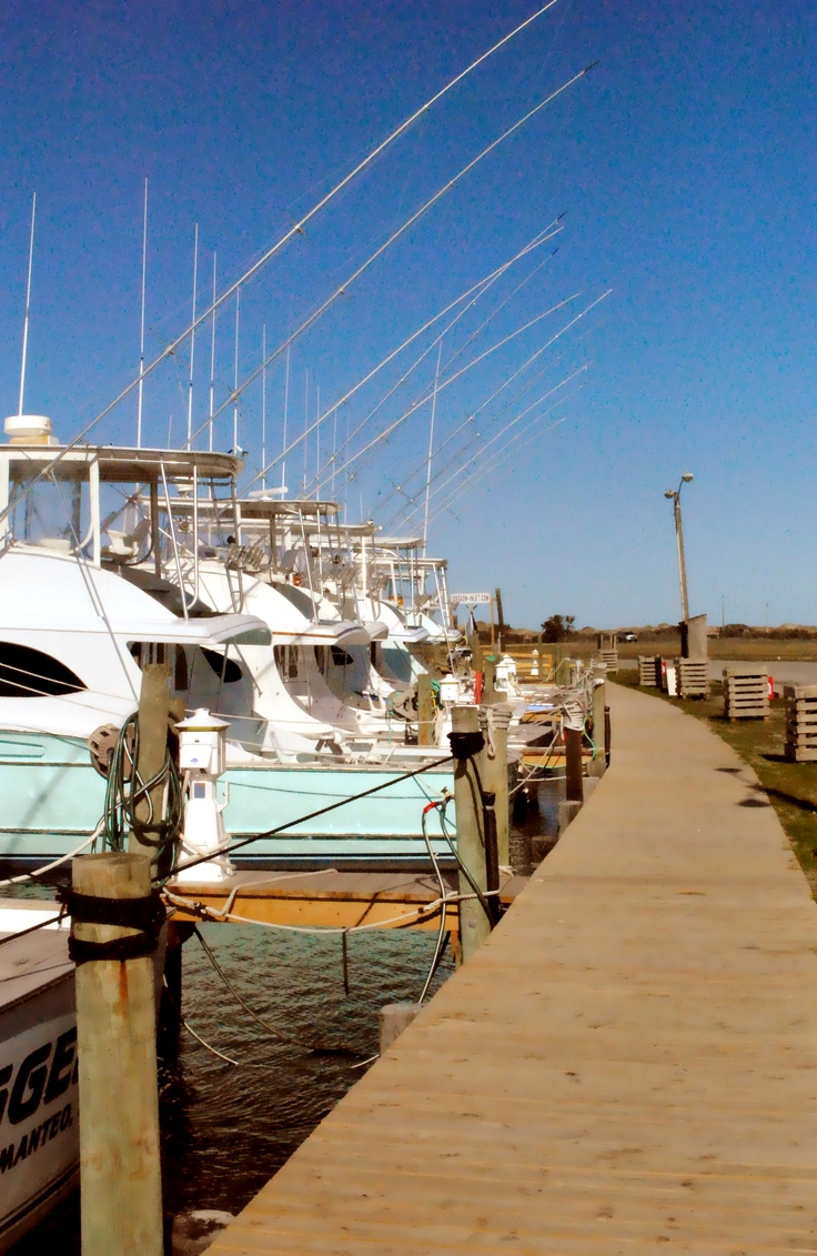 10 images about outer banks fishing on pinterest for Fishing charters outer banks