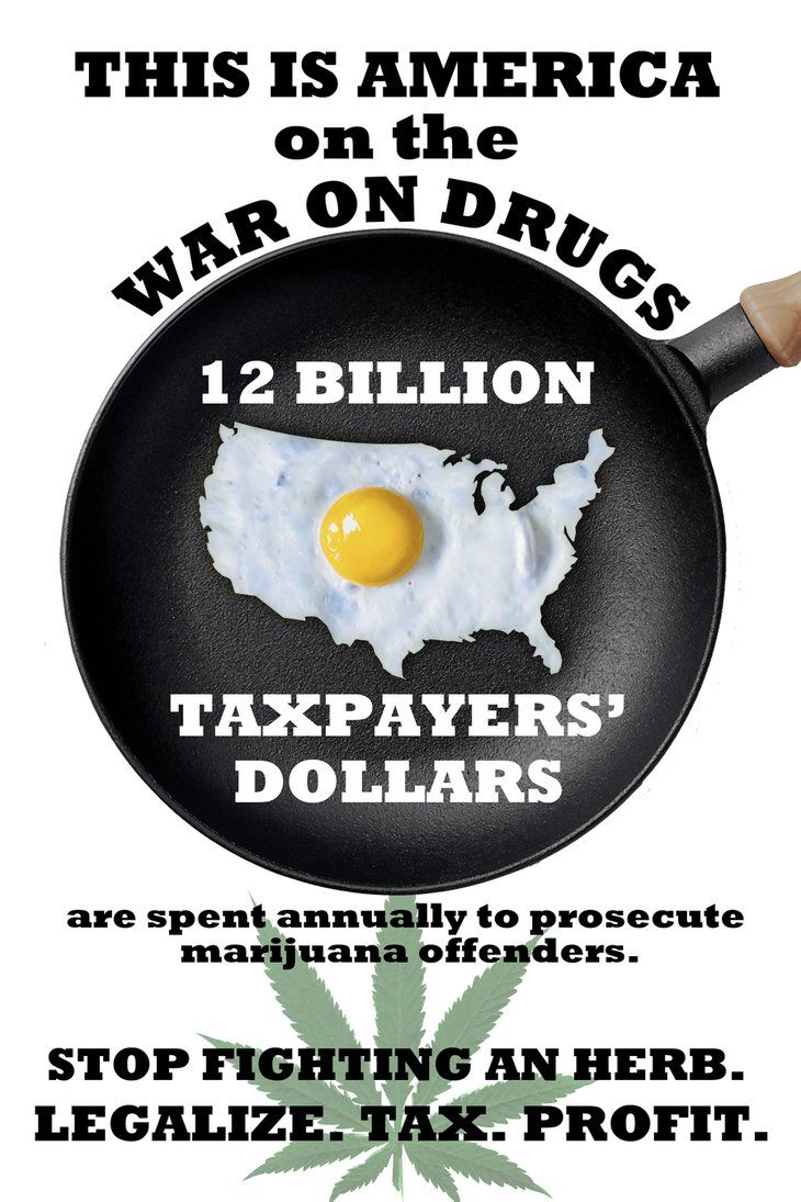 an analysis of the twelve reasons to legalize drugs To legalize or not to legalize drug legalization huffpost live will be taking a comprehensive look at america's failed war on drugs august 28th and september 4th from 12-4 pm et and 6-10 pm et expert analysis and commentary to make sense of today's biggest stories.