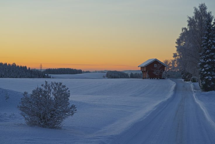 Winter Cold by Geir Tønnessen on 500px