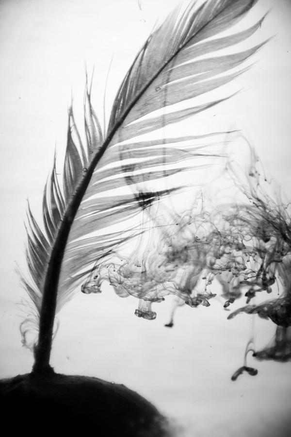 ................. . by Amany Qutb, via Behance