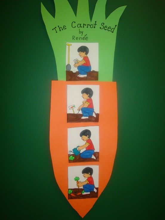 """My kids love the book """"The Carrot Seed."""" I can't wait to do this seed sequencing activity with them!"""