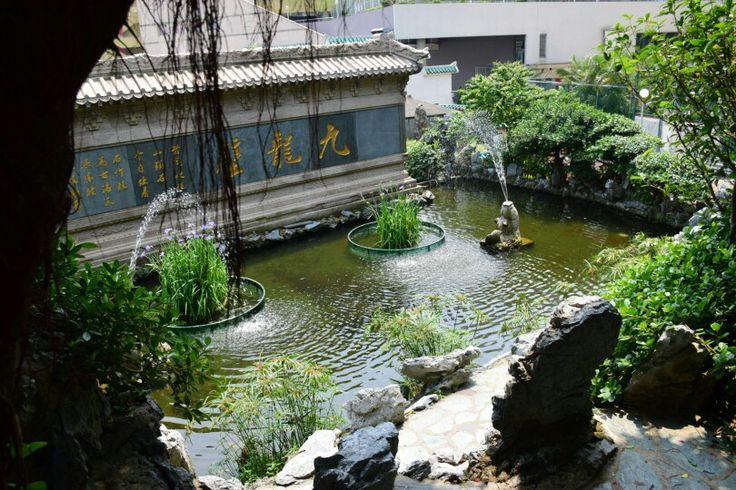 Hidden pond behind the temple