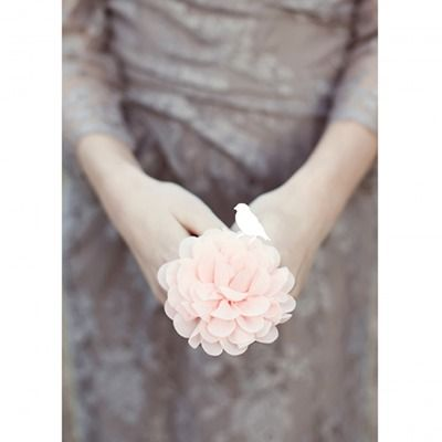 Een sfeerbeeld ansichtkaart van een bloem. Foto kaart zonder tekst uit de 'Zeg het zacht' serie. Met ook de achterzijde bedrukt in een mooie pasteltint. Ook leuk om als decoratie te gebruiken. Fotografie kaart kleur pastellen  foto