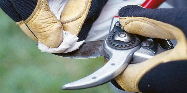Removing #Rust from Your #Tools Know #DIY here http://www.whitestractors.com.au/blog/241-removing-rust-from-your-tools.html