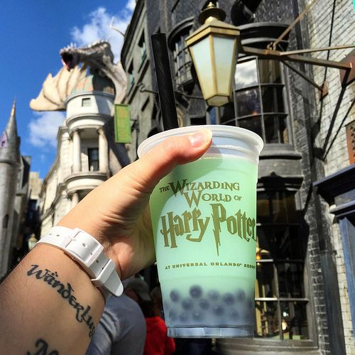 Fishy Green Ale in Diagon Alley... Ok so it's universal, not dis, but awesome treat!! 12/28/15