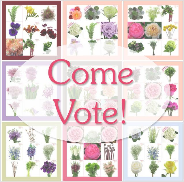 The 2014 Great Inspirations DIY Wedding Flower Giveaway will be announcing it's winner on April 14th! In order to pick that winner we need your vote!