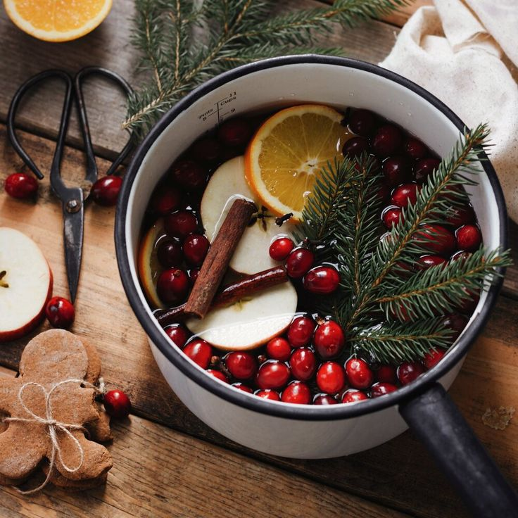 Holiday Simmer Pot DIY — Calico and Twine