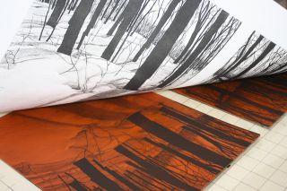 the printmaking process Jeanne Amato solar plate printmaking