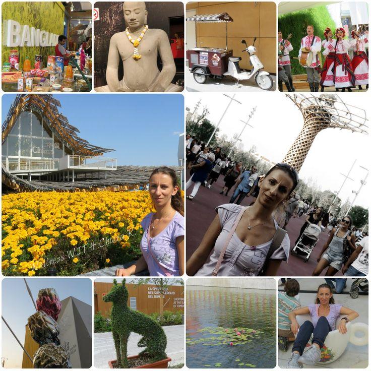 Expo Milano 2015 - My Experience #OrtoRomiExpo