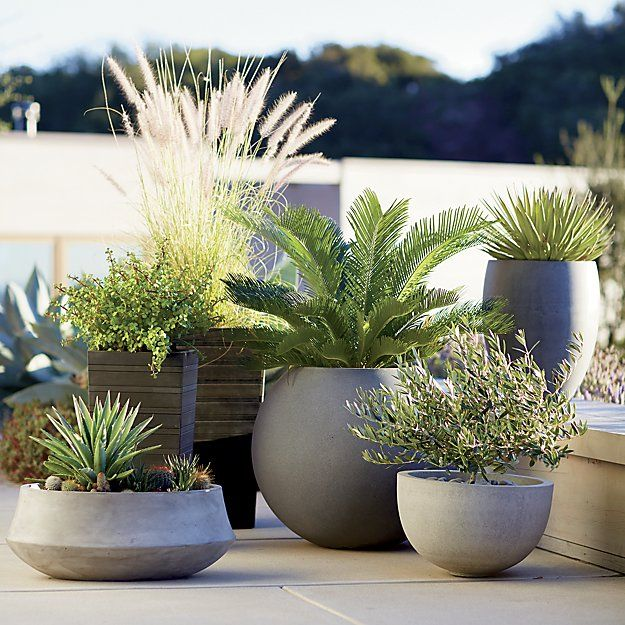 Add style and sophistication to your patio with outdoor accessories from Crate and Barrel. Browse pillows, rugs, decor and more. Order online.