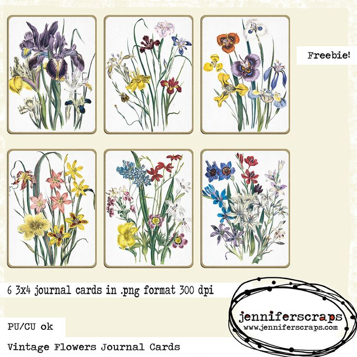 Vintage Flowers Journal Cards - Freebie of the day From JenniferScraps- Free Mother's Day journal cards. 6 3x4 inch printable journal cards. Each card features a different bouquet of flowers. These little cards would make a great center focal point for a card. VisitSite http://www.jenniferscraps.com/2014/05/02/vintage-flowers-journal-cards-freebie-of-the-day/