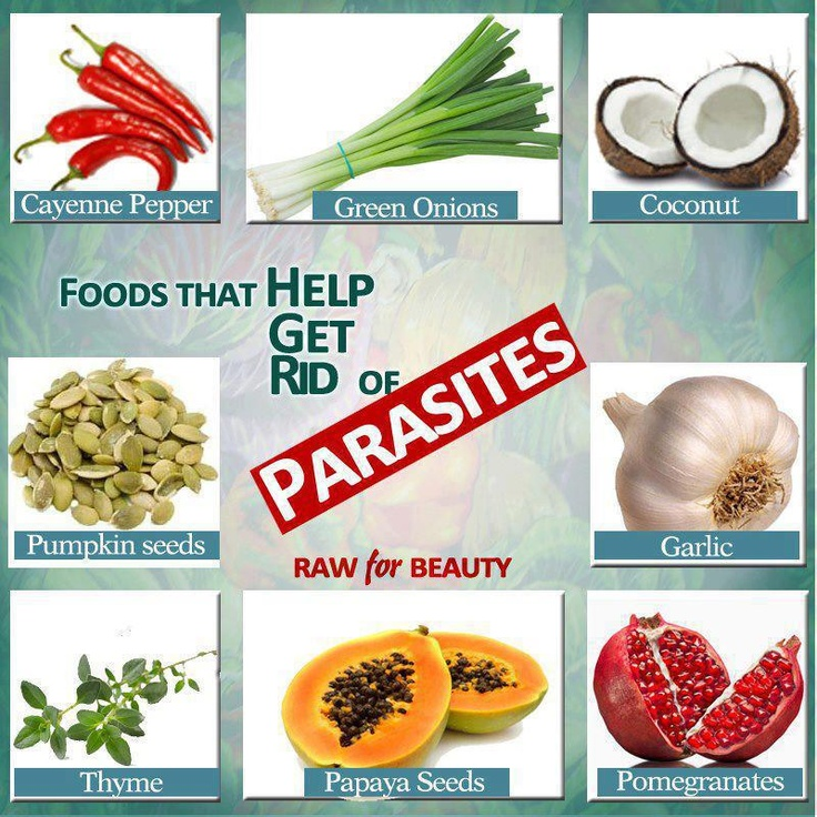 antiparasitic foods and herbs