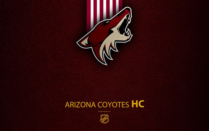 Download wallpapers Arizona Coyotes, HC, 4K, hockey team, NHL, leather texture, logo, emblem, National Hockey League, Glendale, Arizona, USA, hockey, Western Conference, Pacific Division