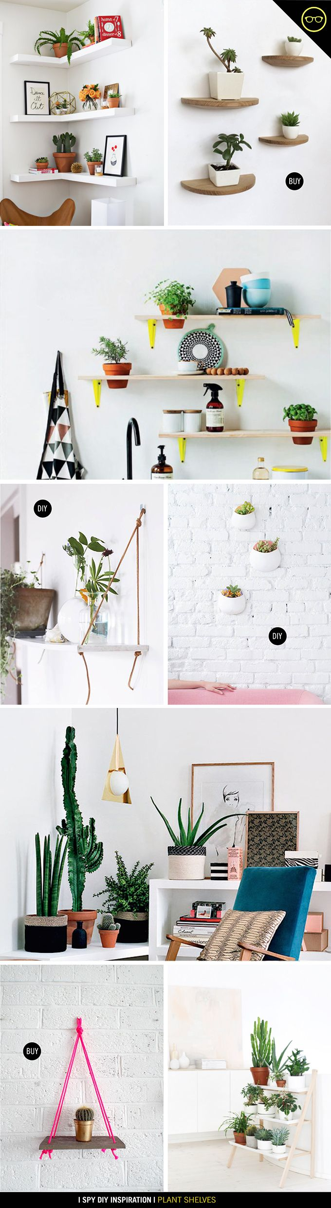 INSPIRATION | Plant Shelves