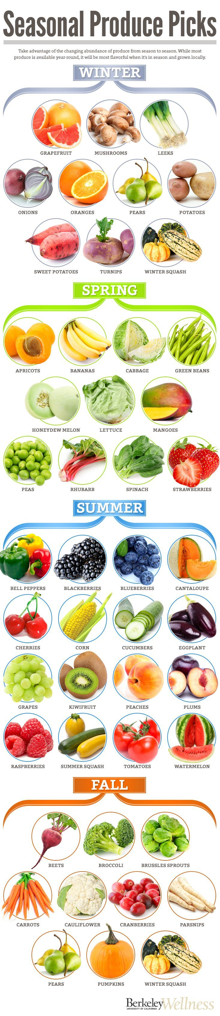 Seasonal pick! Which fruits and veggies are in season during winter, spring, summer and fall. #health #diet #healthyeating #healthydiet #fitness