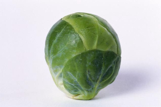 Brussels-sprouts-a-vegetable-brussels.jpg (636×424)