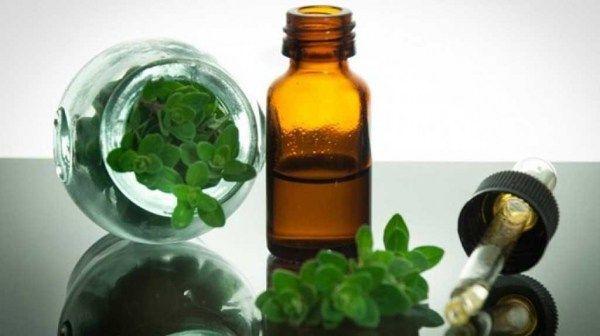 Πρόσφατες εργαστηριακές μελέτες επιβεβαίωσαν οτι το ριγανέλαιο είναι ένα ισχυρό φυτικό αντιβιοτικό,...