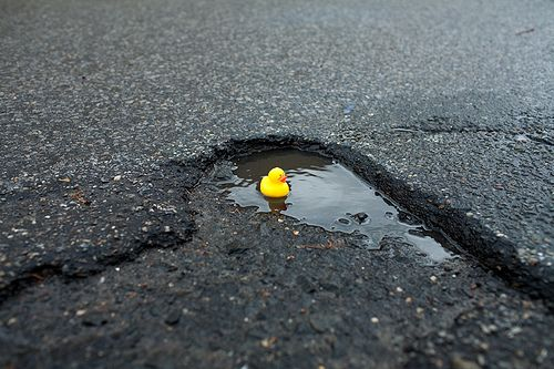 when life gives you rain, make duckie ponds!
