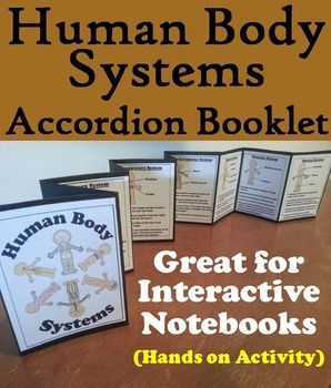 8 best anatomy images on pinterest activities for students high the human body systems interactive notebook project activity fandeluxe Choice Image