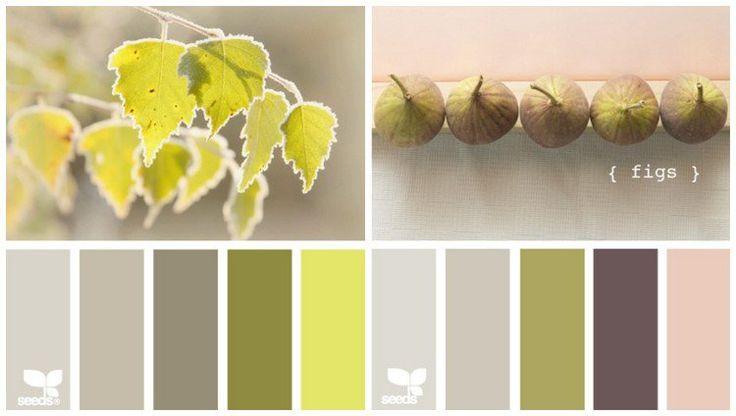 quelle couleur pour cuisine choisir - les nuances terreuses vert olive, vert clair ou figue verte