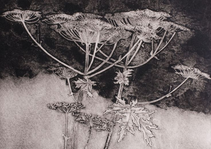flowers collagraph