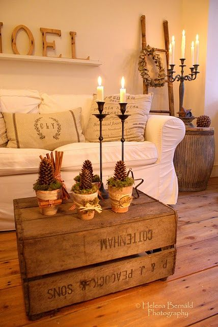 I love everything about this picture - the high candelabra, the pine cone pots for Christmas, but especially the old crate used as a coffee table in a loft.