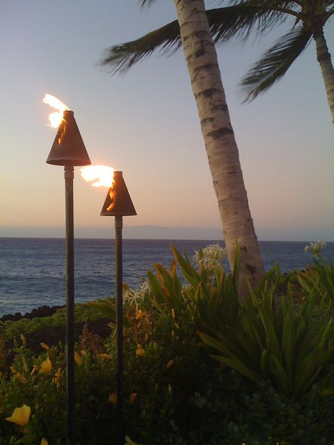 Best times to travel to Hawaii & which islands. Wonderful info.