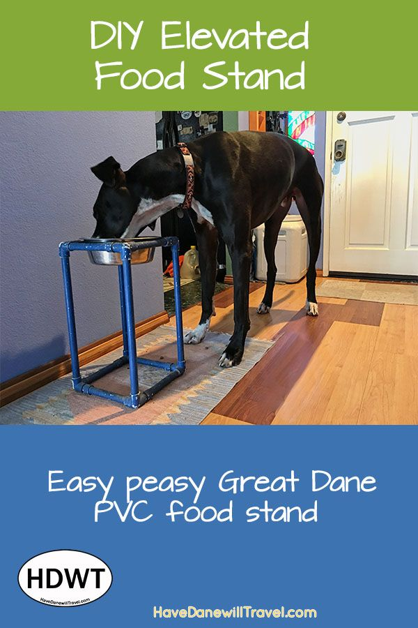 Diy Great Dane Elevated Food Stand