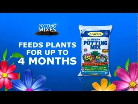 We all love a healthy potted plant, this short clip from Searles Garden Products has great tips and products for growing lushes pot plants and delicious vegetables! For more information on products and more tips on potting plants visit #www.searle.com.au.  #potting #mix #searles #premium #pots #fertiliser #outdoors #indoors #garden #plant #australia