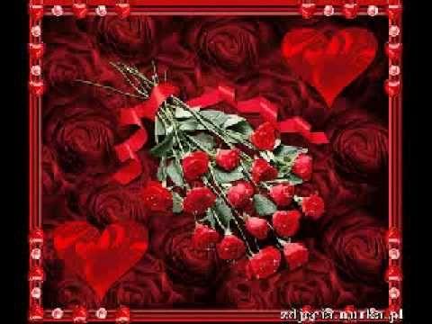 Róża czerwona jak aksamit Damian Holecki - YouTube