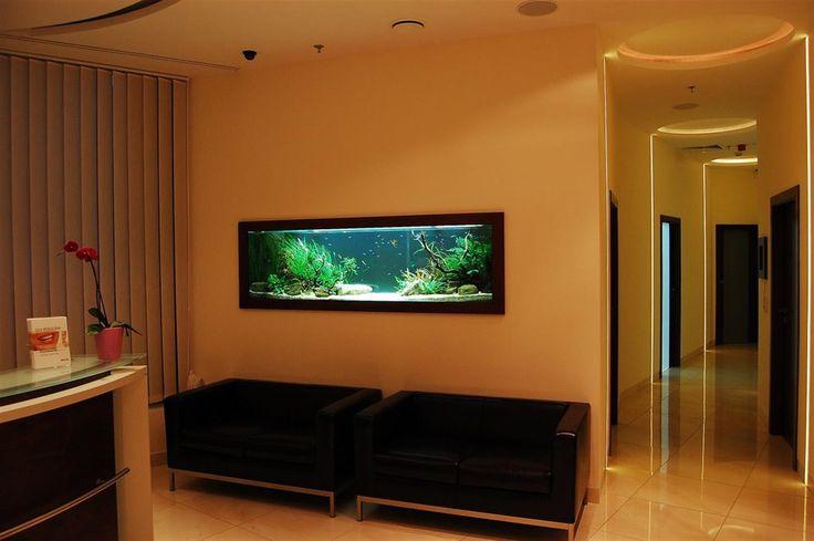 Akwarium wbudowane w ścianę na indywidualne zamówienie. Dowolny wymiar, wykończenie, aranżacja. Profesjonalny projekt i wykonanie.   http://www.mega-meble.pl/akwaria/akwarium-w-scianaie.html