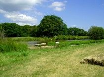 Blacklands Farm, Henfield, West Sussex, England. Camping Holiday. Travel.