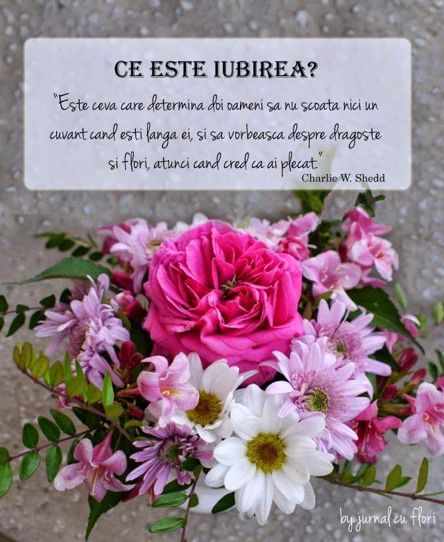 un buchet cu flori roz si citat despre ce este iubirea, inspiratie de ziua indrgostitilor