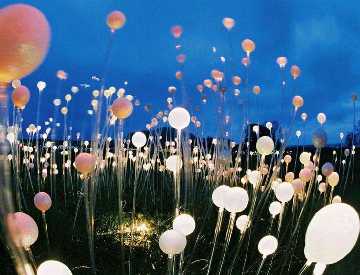 The Field of Light / Long Knoll / Bruce Munro