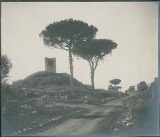Italia, Roma. Via Appia, ca. 1905