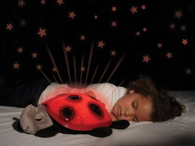 Twilight Ladybug: la coccinella dalla luce notturna | Famideal.it