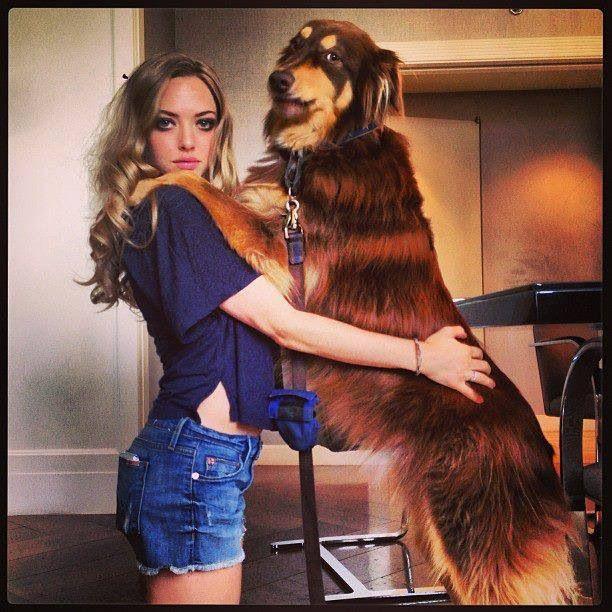 Amanda Seyfried & Dog