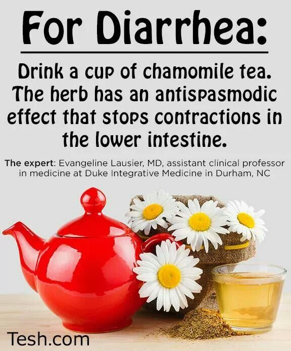 Natural Remedies For Diarrhea In Kittens