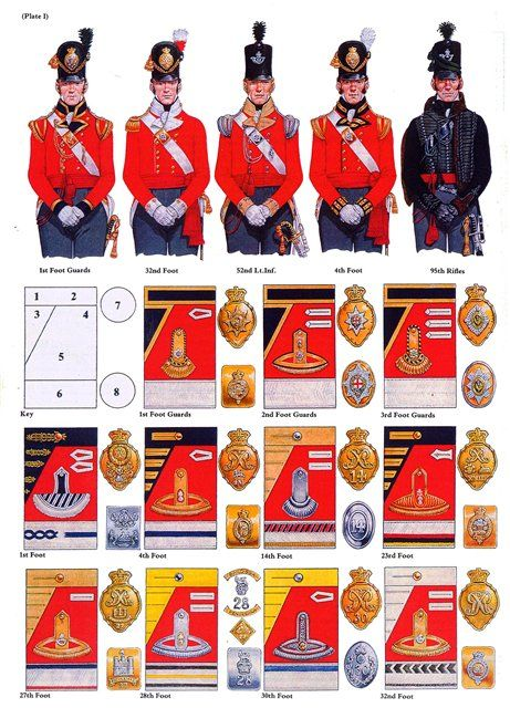 An illustration showing the lace and belt plates from several British Napoloenic regiments.